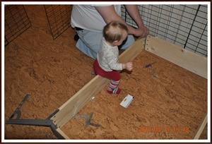2010-03-18 Tess hjälper pappa med Dixys valplåda