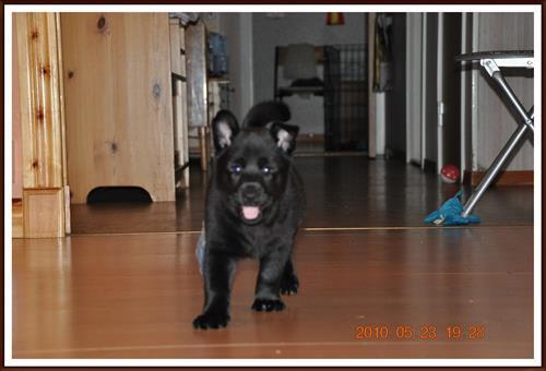 2010-05-23 Kaxa 7 veckor & 1 dag
