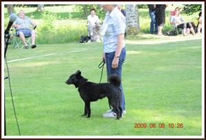 2009-08-08 Nora