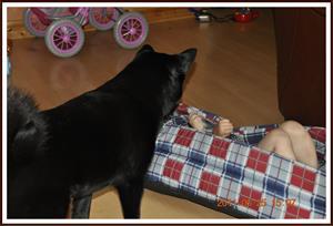 2011-06-25 Vad gör du i min säng ?