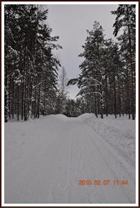 2010-02-07 Vinterlandskap  Fjällmossen 15