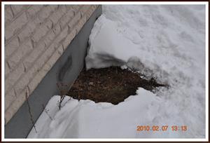 2010-02-07 Sommar runt hörnet