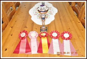 2013-06-01 Kaxas priser