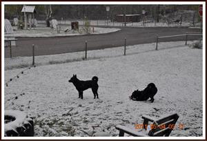 2011-05-04 Snö i Maj vad är detta för dumheter?
