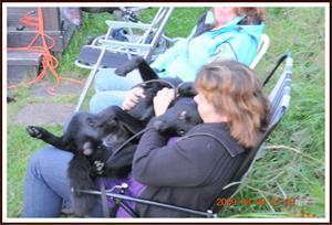 2009-08-08 Sorbus gosar med matte Ingela