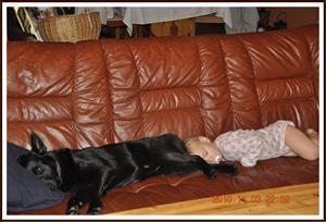 2010-11-03 Kaxa & Tess sover tillsammans