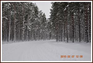 2010-02-07 Vinterlandskap  Fjällmossen 26