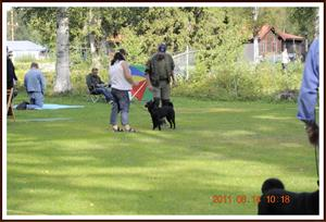 2011-08-14 Dalomsvikens Queen-Of-Black