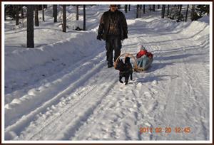 2011-02-20 Dixy våran draghund