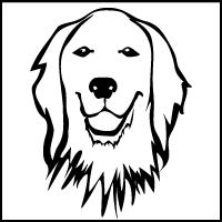 Hund_Profil