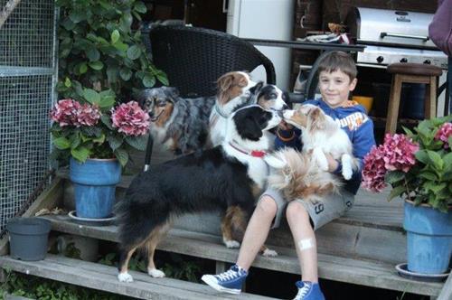 Dennis sitter med alla 5 hundarna