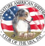 American Shepherd safe_image[1]