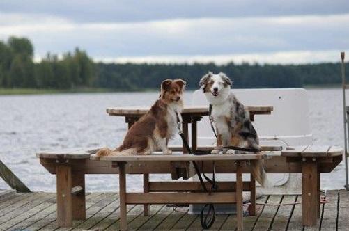 Julia och Quen vid bordet