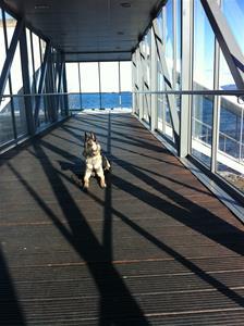Leia tränar platsliggning på Jönköpingsstation