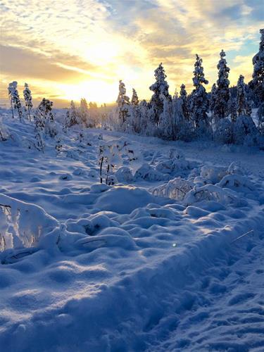 vinter5