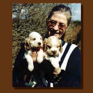 2002 Maud med cockervalpar