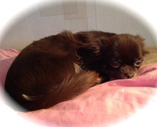 Esther trött