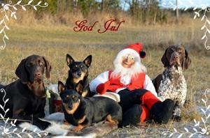 God jul med hele gjengen