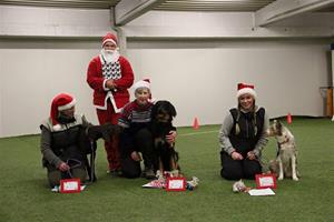 Pallplasseringen på juleavsluttningen i Rallygruppa :) Chikita ble nr 2