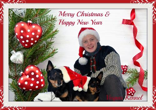 julekortbilde Martin vinni og Vesla (1024x686)med ramme