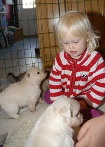 Aleksandra og valpene 2007