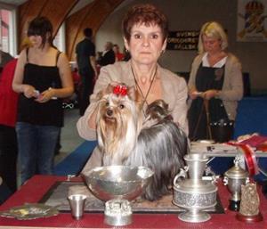 bisunghund1