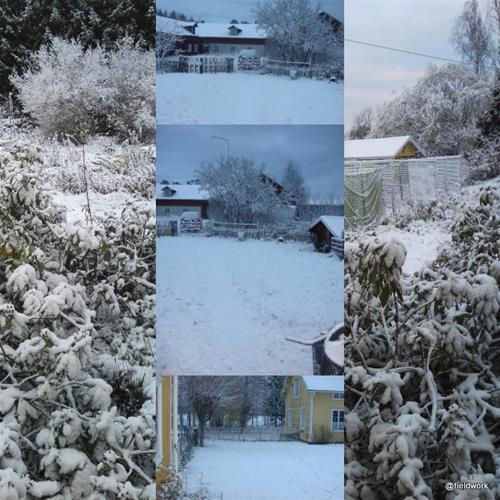 27okt (första snön)