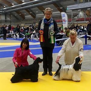 SKK Sundsvall 9apr2016 Zantos BIM