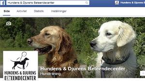 Facebook jan 2015