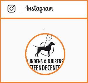 Instagram 170207c