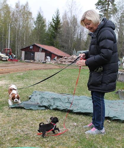 Matilda med matte Lena och 'storebror' Benny