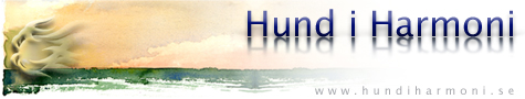 hundiharmoni