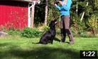 Kajsa & Maya tränar avlämningar