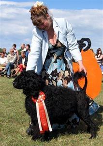 BIG-R Sea King's Gute Wid Gaut - Gotland Dog Show INT 1-7 2007