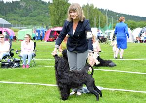 54 DSC_0425 Junior Tik 2:a Mighty Quinn's Conquering Vanora ägare Maria Karlsson