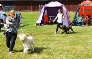 Barn med Hund Albin och Ida