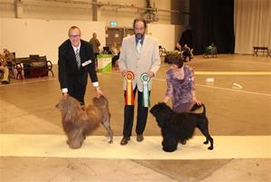 Kista Stockholm int. 2009-04-12. BIR ABADESSAN'S CACAU D'CARAMBA & BIM ROBEL KATHARINE THE GREAT AQUATASS