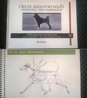 """Portuguese Water Dog  The Standards – Type and  morphology av Rui  Oliviera."