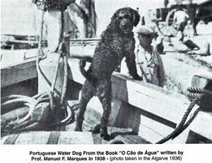 Arbetande på fiskebåtar