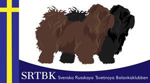 Srtbk-logo_vit