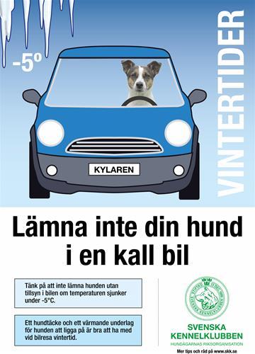 hundikallbil-affisch-a3