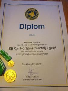 fortj.medalj.guld