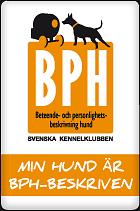 bph-minhund-140px