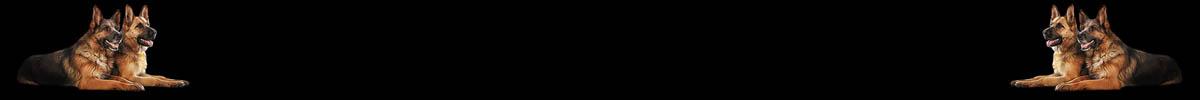 banner_botten