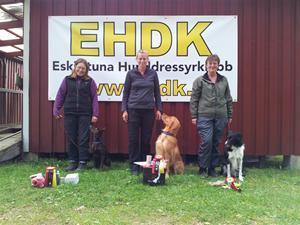Klass Elit! 1:a pris tagaren var inte från länet så 2:a pristagaren blev Länsmästare 2012
