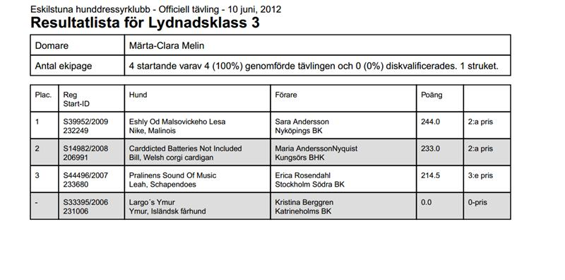 pdfresultat10_6KlassIII