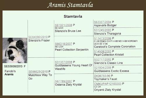 Stamtavla- Aramis
