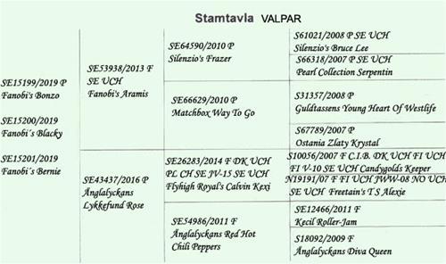 STAMTAVLA -Valpar