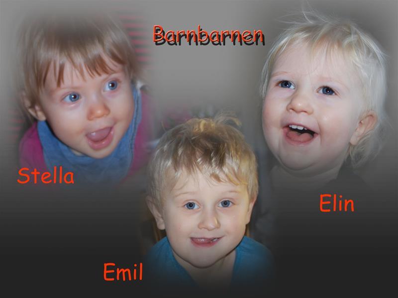 Barnbarnen