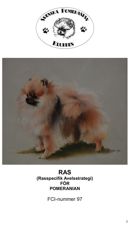RAS uppdaterat 15jan 2014-1